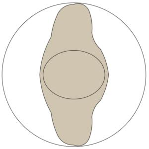 A imagem mostra o Bloco Dinâmico de Figura Humana, em fundo branco.
