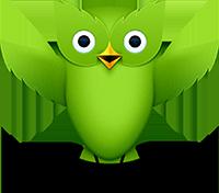 duolingo.com